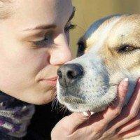 17 Essentials of Pet Care